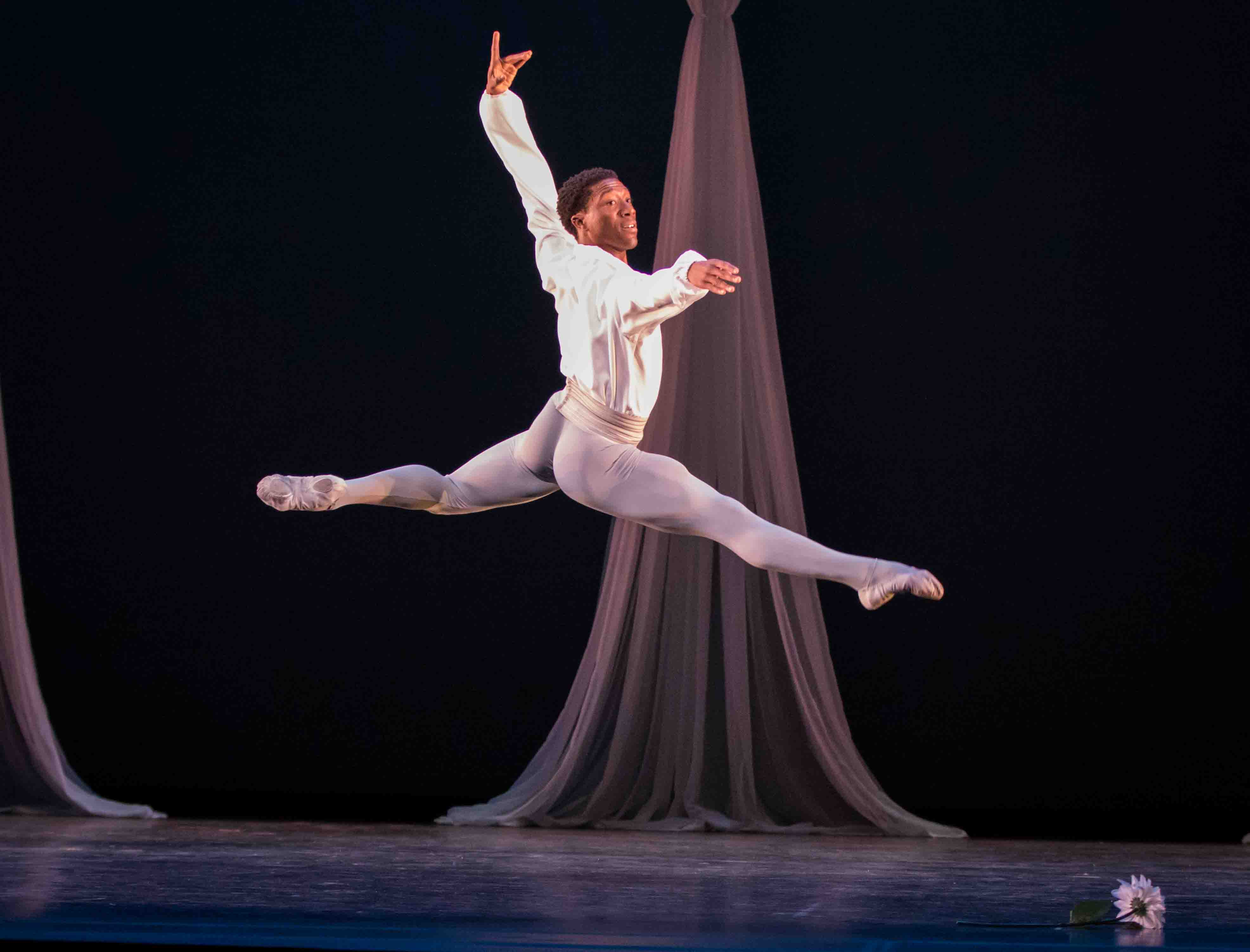 Greatest Hits Archives Ballet Focus